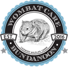 Wombat Care Bundanoon